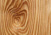 woodtypes-grain.jpg