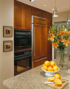 Decorative Appliance Panel for Refrigerator with Top Panel