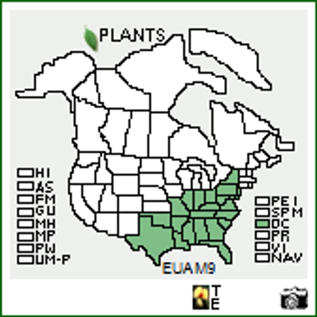 Euonymus americanus Native Range Map