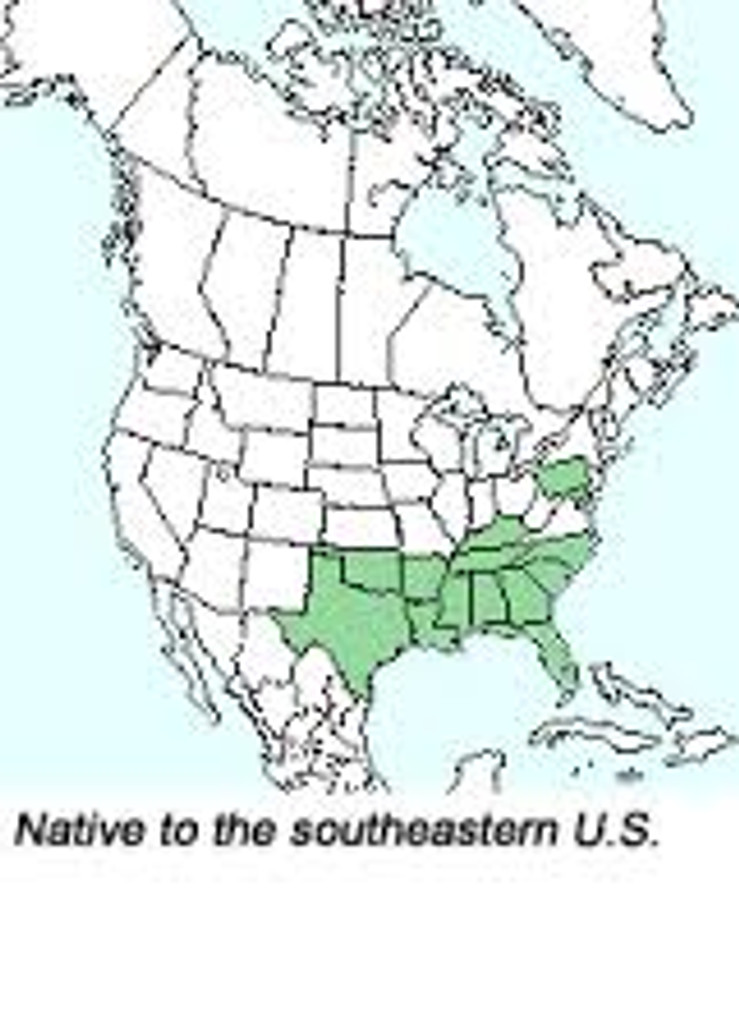 R. canescens native range map