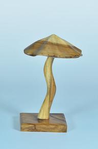 Elite Natural Mushroom Earring Display