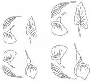 Patchwork Cutters - Arum Lily Cutter Set (12 Pcs.)