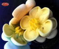 Blackwood Lane - Assorted Wild Rose Sugar Flowers (6pcs)