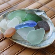 sea glass pieces in shell