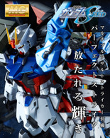 MG 1/100 Perfect Strike Gundam Special Coating Ver. Plastic Model Kit