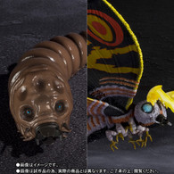 S.H.MonsterArts Mothra adult & Mothra Larval Special Color Ver.
