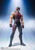 S.H.Figuarts Tiger The Dark Action Figure