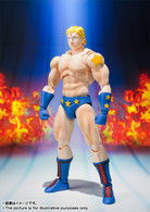 S.H.Figuarts Terryman (Completed) Action Figure