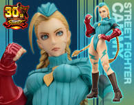 STREET FIGHTER Bishojyo Cammy -Zero Costume- 1/7 PVC Figure (Completed)