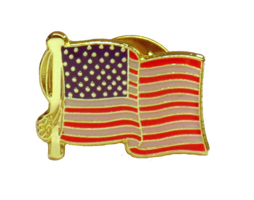 American Flag Unity Pin
