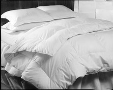 DOWNLITE - Enviroloft Down Alternative Comforter