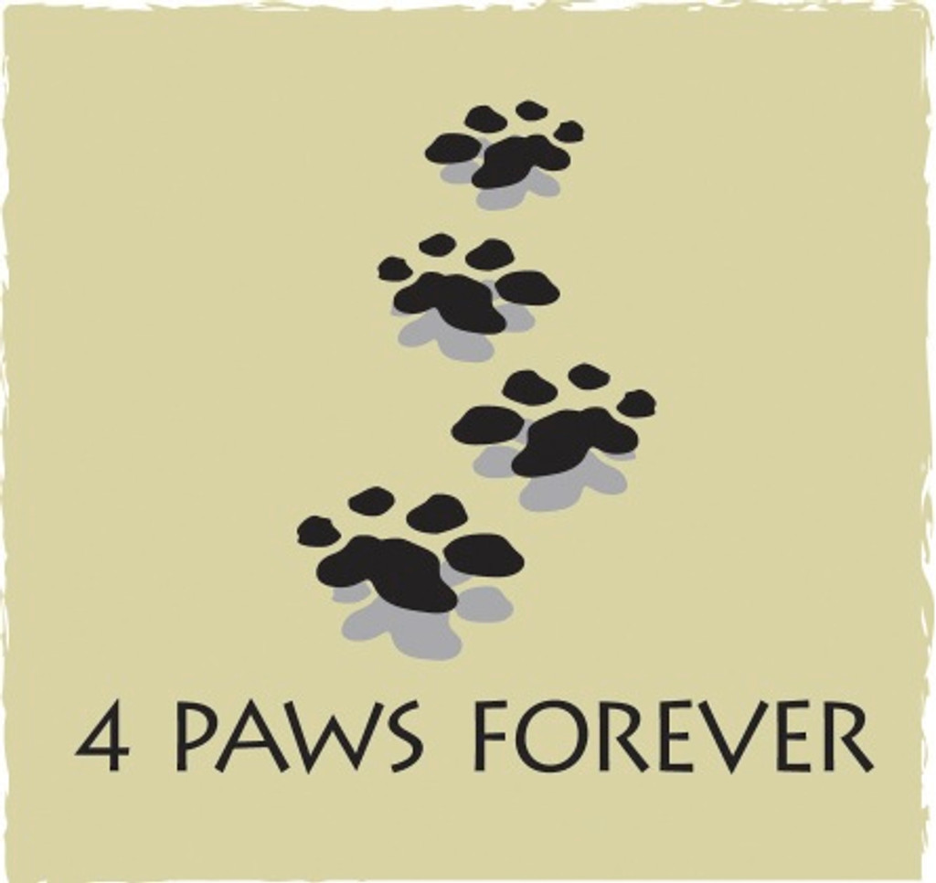 4 Paws Sympathy Card with Tree - Paws to Heaven