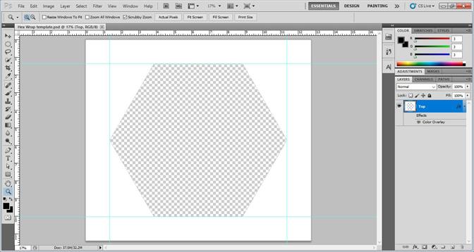 template-screen-shot-small.jpg