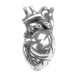 Heart Anatomical Jewelry Pendant - Anatomy & Medicine - Museum Store Company Photo