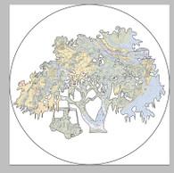 Oak Tree & Golf Cart Bumper Sticker - Savannah Area