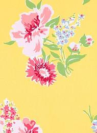 Madcap Cottage Isleboro Eve Daffodil