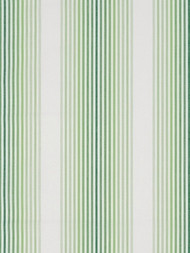 Madcap Cottage Tivoli Stripe Palm