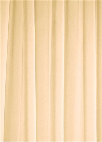 Champagne Sheer Dress Fabric