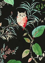 Owlish Black - Kate Spade Fabric