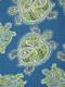 Tranquil Turtles Peninsula