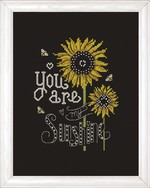 Sunshine Chalkboard Cross Stitch Kit by Design Works