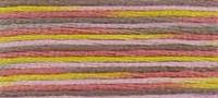 4509  - DMC Coloris Stranded Thread Art 517