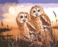 Owls by Moonlight Canvas only By Grafitec