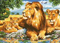 Lion Family Canvas only By Grafitec