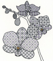 Blackwork Orchid By Bothy Threads