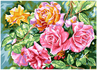 Radiant Roses Canvas By Grafitec