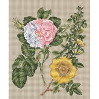 Damask Rose & Yellow Rose by Stark Cross Stitch Kit
