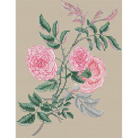 Rosa Gracilis by Henry Charles Andrews Cross Stitch Kit