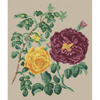 Yellow Centifolia Rose & Purple Rose Cross Stitch kit by Stark