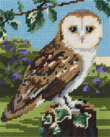 Owl Starter Tapestry Kit