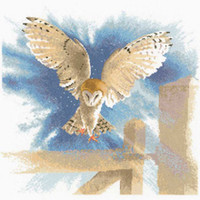 Owl In Flight Cross Stitch Kit