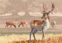 Deer Park Cross Stitch Kit By Heritage