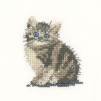 Tabby Kitten Cross Stitch Kit For Beginners