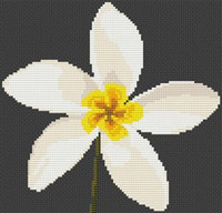 Plumeria Flower Cross Stitch Chart