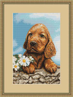 Dog Waiting Petit Cross Stitch Kit By Luca S