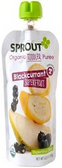 Sprout Organic - Black Currant -4oz