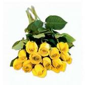 Dozen Roses Bunches - Yellow
