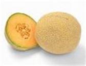 Cantaloupe - ea