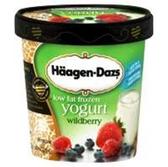 Haagen Dazs Low Fat Frozen Yogurt Wildberry -14 fl oz