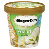 Haagen Dazs Low Fat Frozen Yogurt Vanilla -14 fl oz