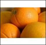 Navel Orange - LB