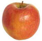 Organic Fugi Apples - lb