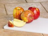 Jonagold Apples - LB