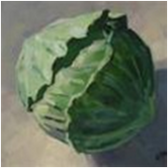 Green Cabbage - Small