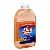 Dial Complete Antibacterial Foaming Hand Wash Refill - 32 Fl. Oz