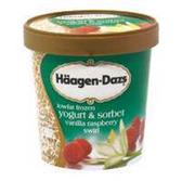 Haagen Dazs Low Fat Frozen Yogurt Vanilla Raspberry Swirl-14 fl